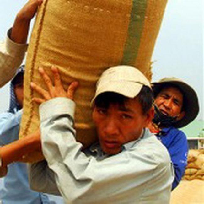 Quý 4, có thể xuất khẩu 2 triệu tấn gạo