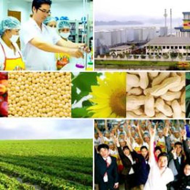 VPK: Đạt 10,14 tỷ đồng LNTT 9 tháng, hoàn thành 84,5% kế hoạch