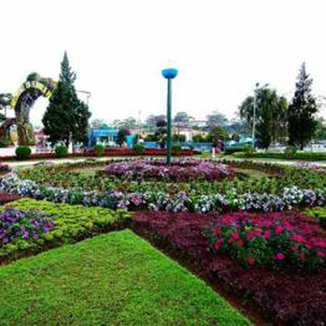 20 triệu USD xây trung tâm thương mại và đấu giá hoa tại Đà Lạt