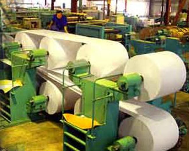 Xem xét Dự án Đầu tư mở rộng Nhà máy Giấy Bãi Bằng giai đoạn 2