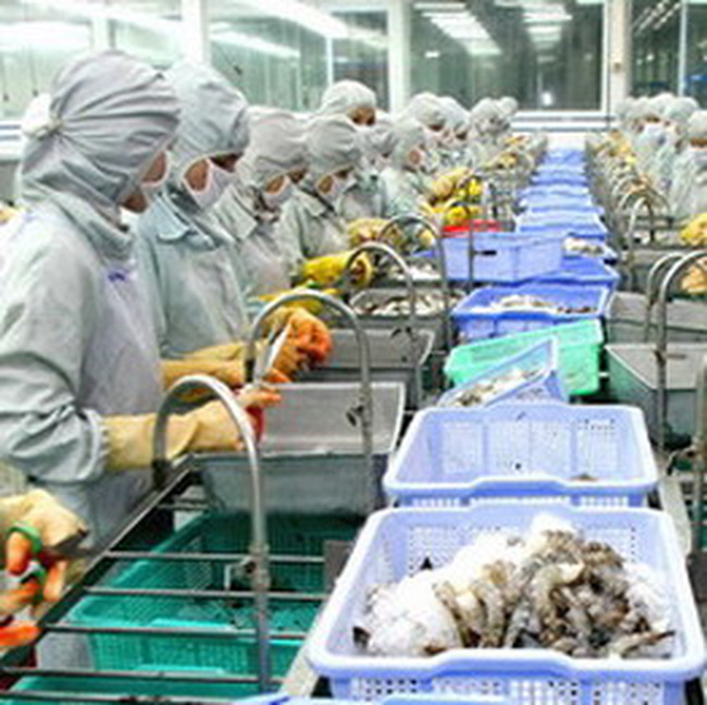 WTO đã bắt đầu xét xử vụ kiện tôm của Việt Nam
