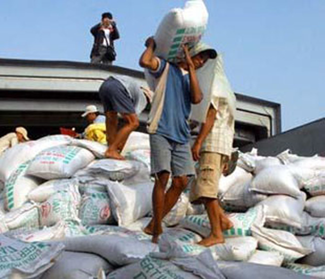 Giá phân bón các loại tăng từ 20% - 30%