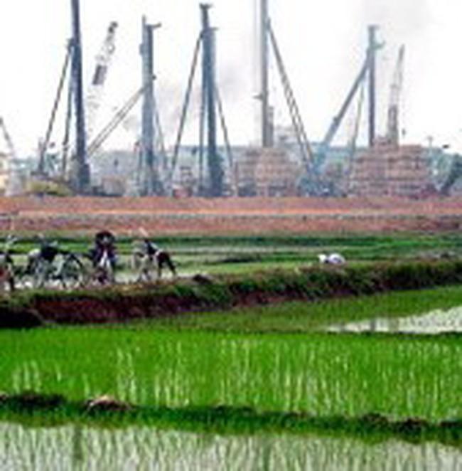 """Đầu tư bất động sản sẽ """"mệt"""" với nghị định về quản lý đất lúa?"""