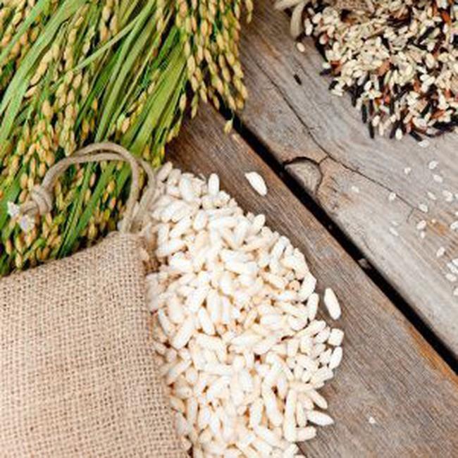 Giá gạo thế giới có thể tăng gấp 3 trong 18 tháng tới
