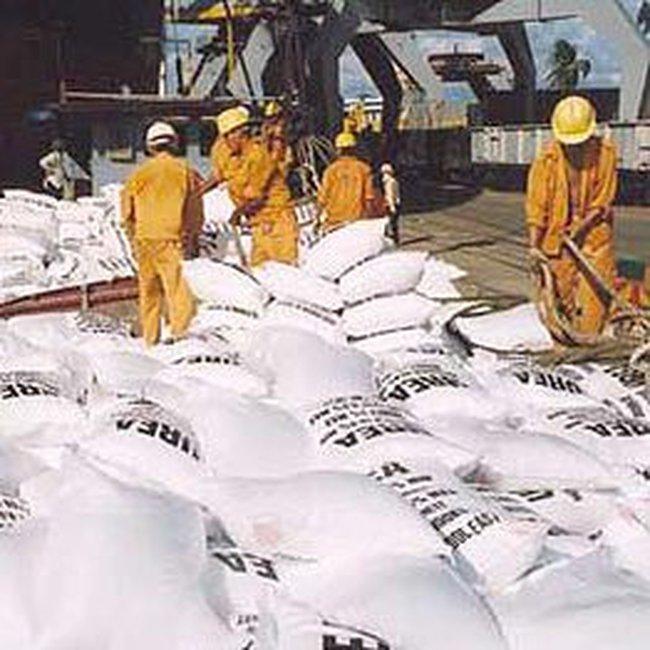 Doanh nghiệp xin xuất khẩu phân bón trở lại