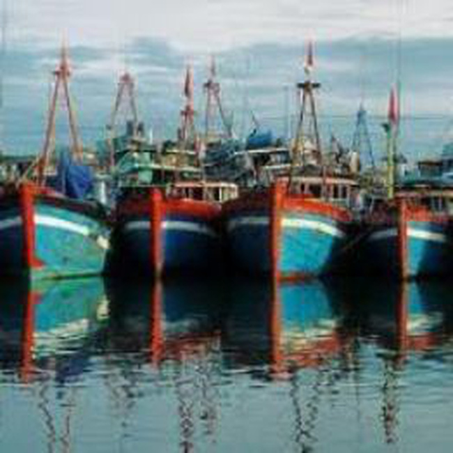 Bổ sung cơ chế đầu tư xây dựng cảng cá loại II