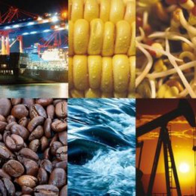 Diễn biến giao dịch trên thị trường hàng hoá thế giới phiên 01/3/2011