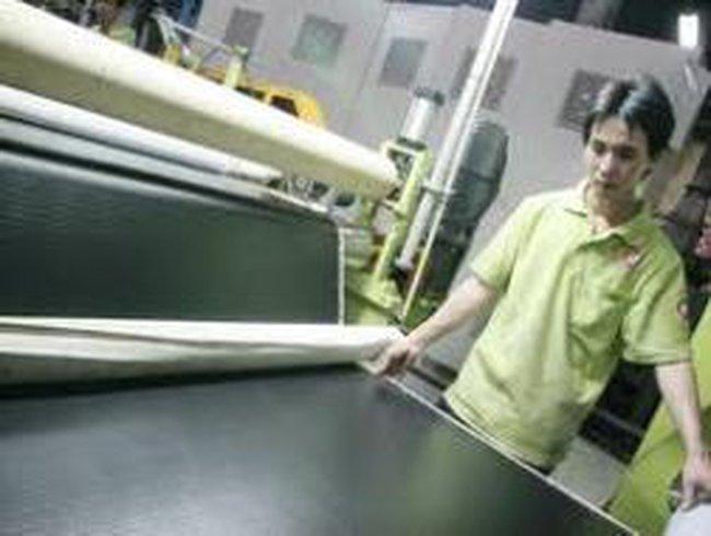 RDP: Năm 2011 phát triển Bao bì và giả da làm sản phẩm chủ lực