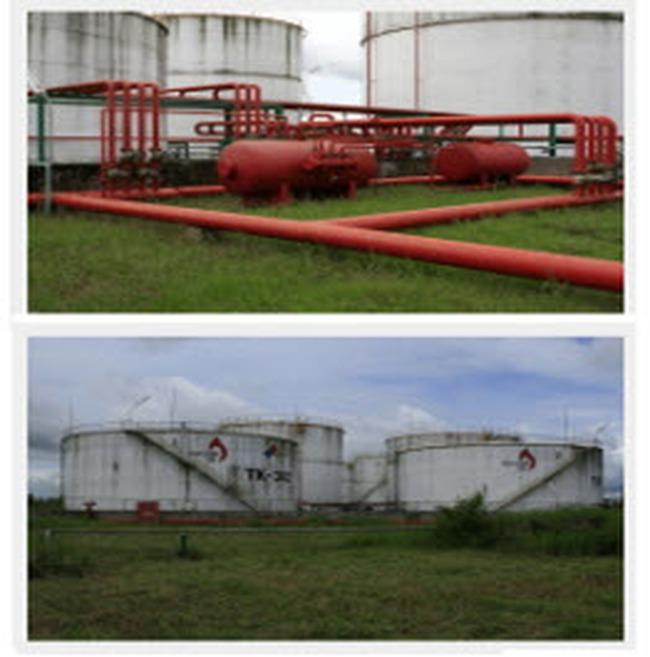 Đấu giá Nam Việt Oil: Bán hết toàn bộ với giá bình quân 18.633 đồng/cp