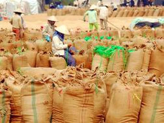 Thủ tướng ra quyết định mua lương thực dự trữ