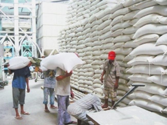 Tiếp tục giảm giá sàn gạo xuất khẩu từ 20/3