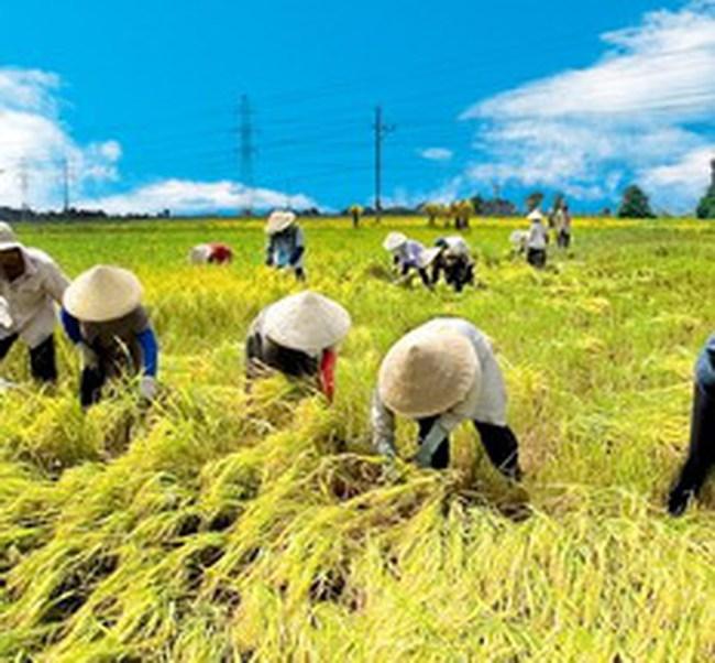 Dồn vốn cho nông nghiệp