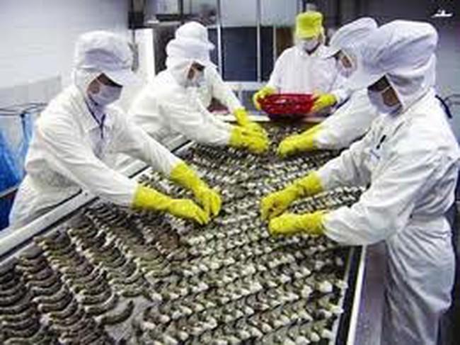 Hướng dẫn thực hiện xác nhận sản phẩm thủy sản chế biến từ thủy sản khai thác NK theo Thông tư 09