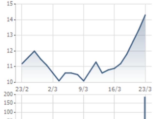 PVG: Đăng ký thoái toàn bộ 6,19 triệu cổ phiếu PGD