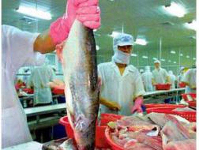 AAM: Đặt kế hoạch 51 tỷ đồng LNTT năm 2011