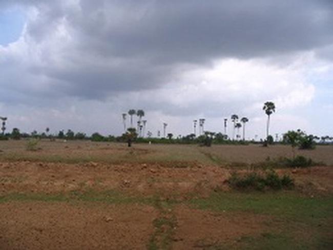 Đà Nẵng: Đổ xô ra vùng ven mua đất