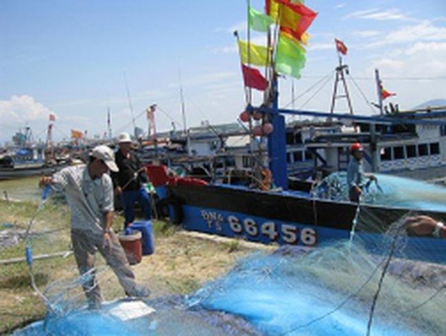 Ngư dân đồng loạt hoãn ra khơi