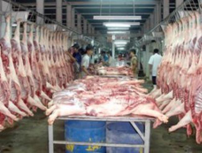 Ngành chăn nuôi lợn Trung Quốc sẽ nhập khẩu lượng thức ăn kỷ lục