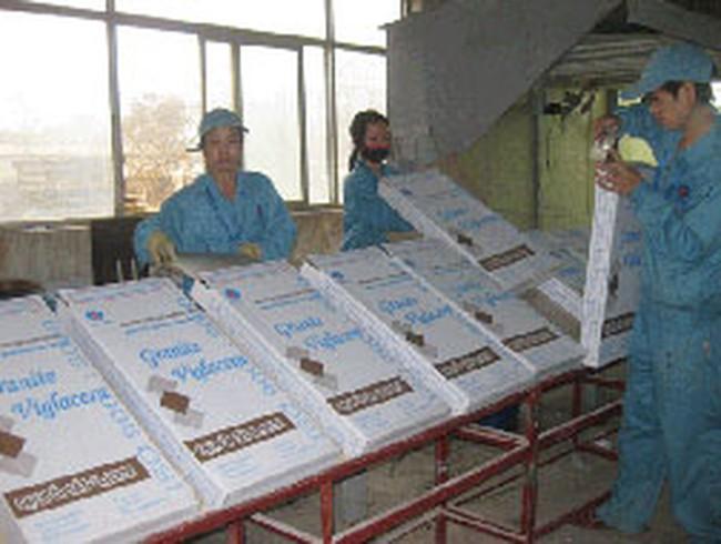 Viglacera: Quý I/2011 doanh thu tăng 35% so với cùng kỳ 2010