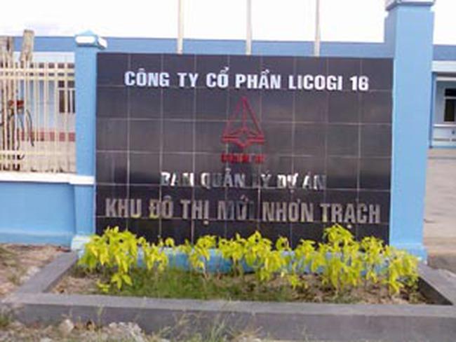 LCG: Năm 2011 đẩy mạnh đầu tư các dự án bất động sản tại Hà Nội