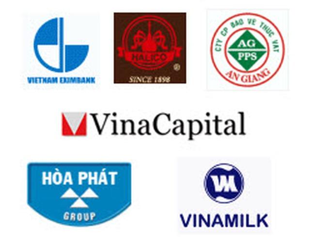 VinaCapital: Quỹ VOF còn 67 triệu USD tiền mặt đang tìm cơ hội giải ngân