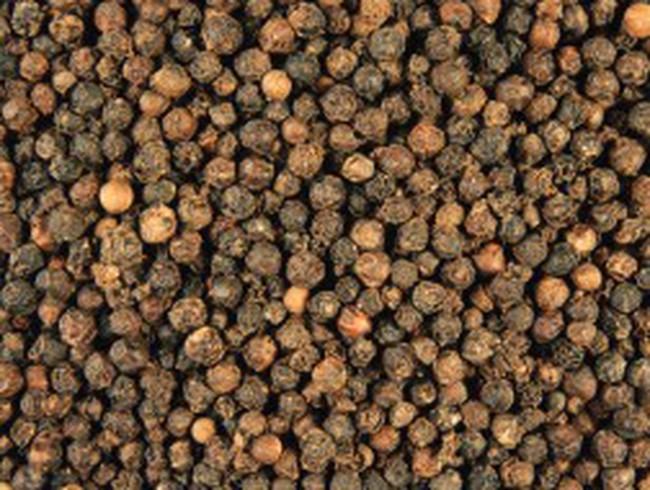 Giá hạt tiêu đen đạt kỷ lục 120 nghìn đồng/kg