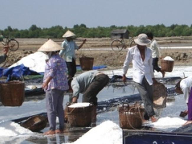 Không có việc dân Quảng Nam mua muối về dự trữ