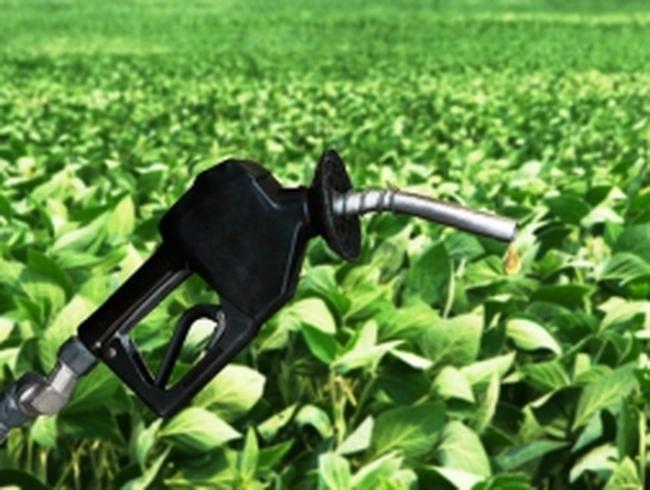 Australia áp thuế chống bán phá giá với nhiên liệu sinh học của Mỹ