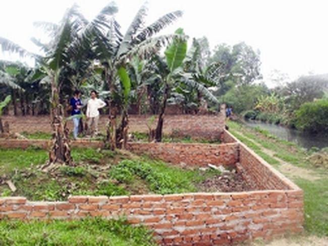 Đất nông nghiệp ngoại thành lên ngôi