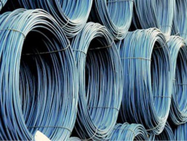 Tổng công ty thép Việt Nam sẽ IPO thông qua đấu giá công khai 66 triệu cổ phiếu