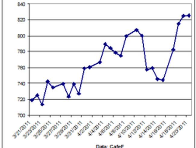 Giá lúa mì tăng mạnh vì thời tiết xấu
