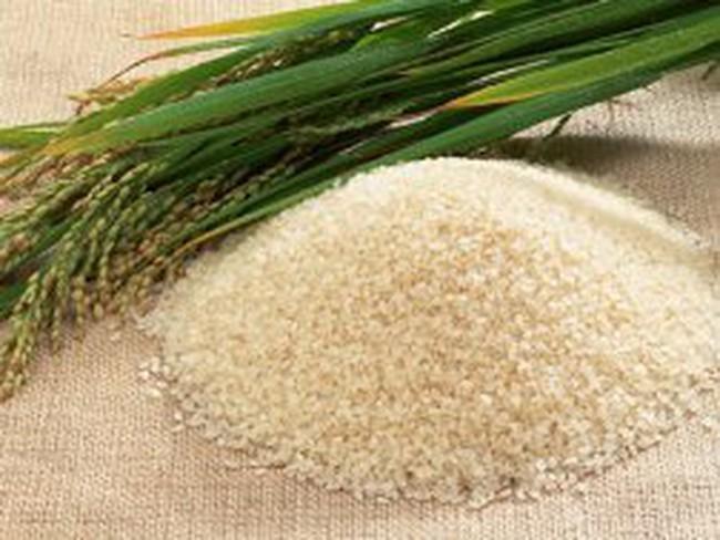 Giá gạo xuất khẩu tăng nhẹ
