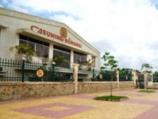 CSM: Trình ĐHCĐ phương án tăng vốn cho dự án Lốp Radian trong năm 2011