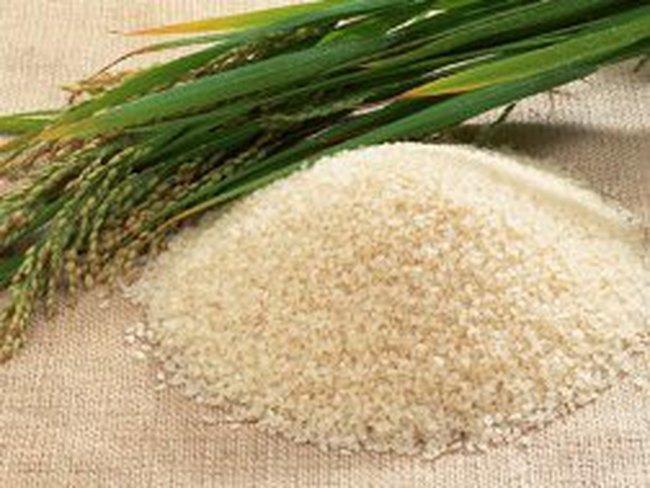 Philippin tạm ngừng công bố thông tin về nhập khẩu gạo