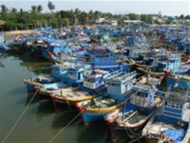 Sẽ hỗ trợ ngư dân bị ảnh hưởng bởi giá dầu tăng cao