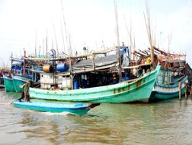Cà Mau: Tàu cá tiếp tục nằm bờ