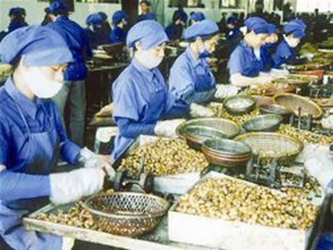 Xuất khẩu hạt tiêu tăng mạnh nhờ giá