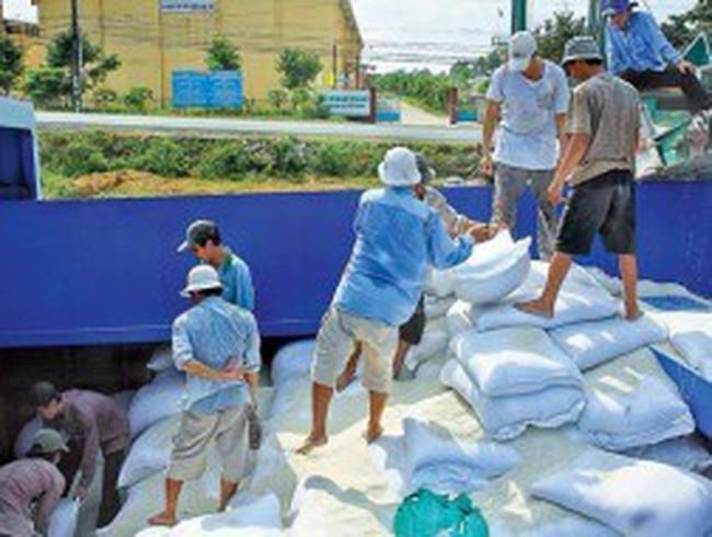 Từ 01/08: Thương nhân bị cấm ép giá mua thóc, gạo của người sản xuất