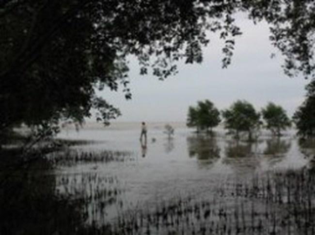 Sóc Trăng: 3 triệu Euro cho dự án quản lý nguồn tài nguyên ven biển