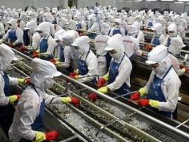 Thủy sản tăng đầu tư vào nguyên liệu