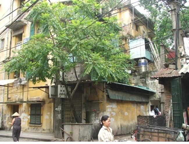 """Cải tạo chung cư cũ tại Hà Nội: Dân """"đánh đu"""" với doanh nghiệp?"""