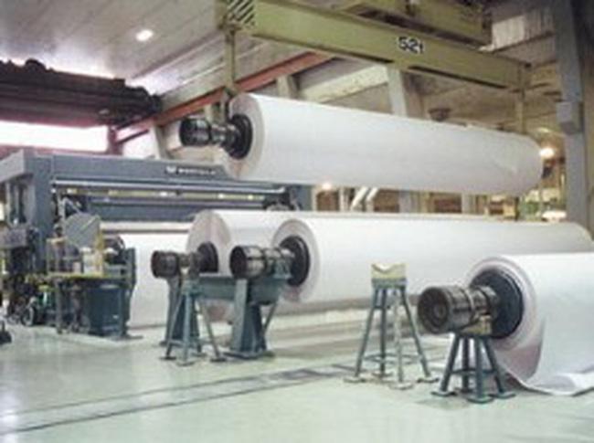 Ngành công nghiệp giấy Đồng Nai chiếm trên 30% thị trường giấy trong nước
