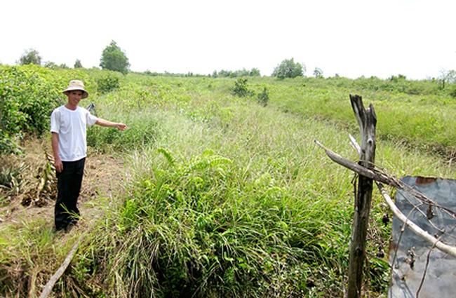 Tiền Giang: Nông dân điêu đứng vì đất trồng bị quy hoạch sân golf, KCN