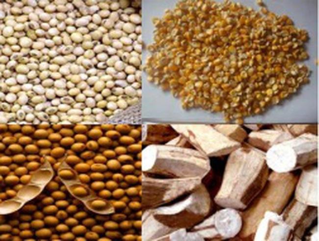 Giá thức ăn chăn nuôi nhập khẩu giảm tháng thứ 2 liên tiếp