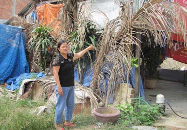 Đà Nẵng: Nhiều hộ dân thành con nợ vì cả tin