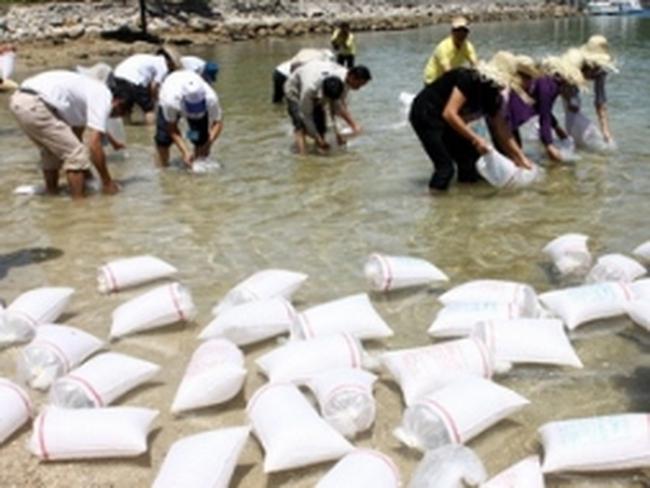 Xuất hóa chất Chlorine dự trữ quốc gia để phòng, chống dịch bệnh tôm nuôi