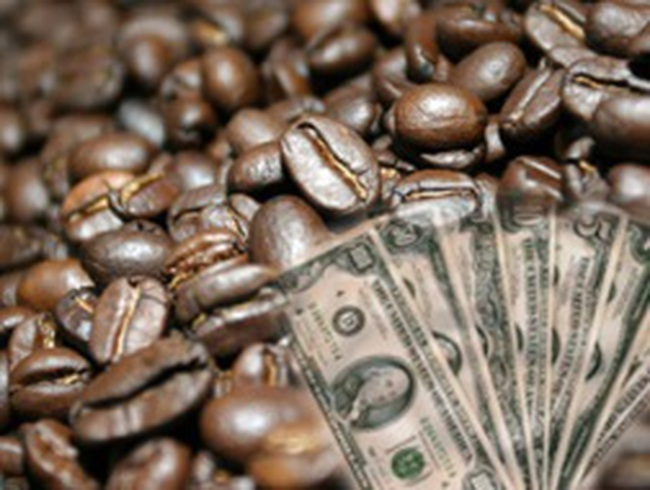 Giá cà phê tăng 1 triệu đồng/tấn sau 6 ngày giảm liên tiếp