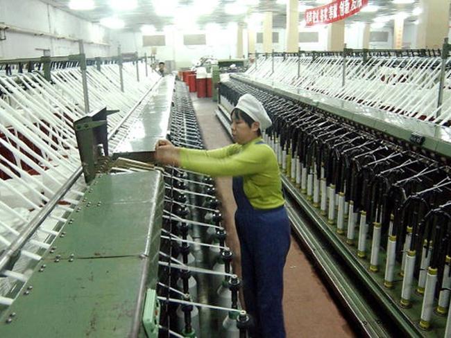 Năng suất lao động của lao động Việt Nam thấp hơn Thái Lan 30 lần