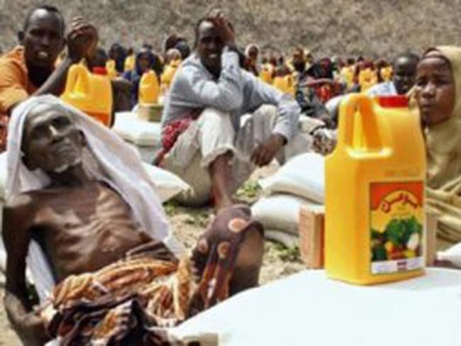 FAO họp khẩn tìm giải pháp cho nạn đói ở châu Phi
