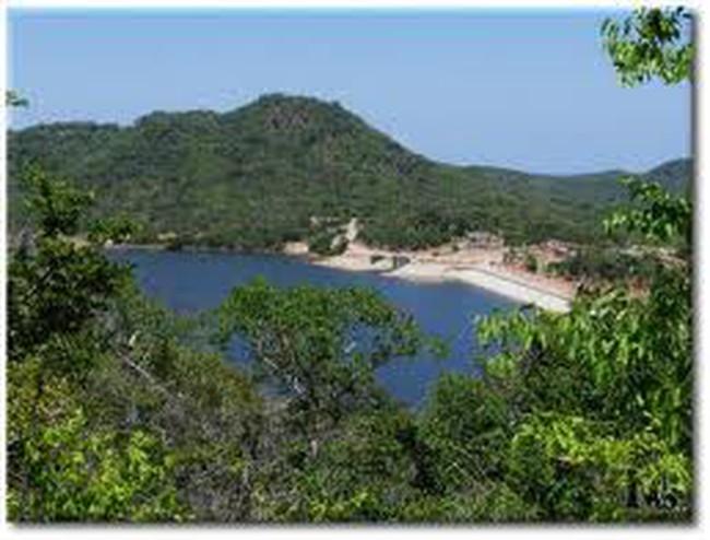 Giao đất vườn quốc gia Núi Chúa để làm dự án du lịch